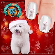 bichon frise with santa hat nail art now 50 more free u2013 patch puppy