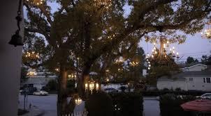 Chandelier Tree California The Chandelier Tree In Silver Lake California Lightopia S