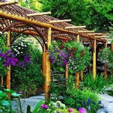 simple backyard vegetable garden decorating clear
