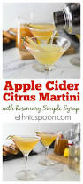 apple martini mix citrus apple cider martini analida u0027s ethnic spoon