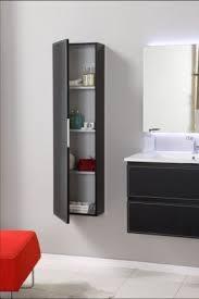 Wall Mounted Bathroom Storage Units Bathroom Wall Hung Bathroom Storage Incredible On Bathroom For Top