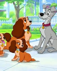 65 lady tramp images disney dogs