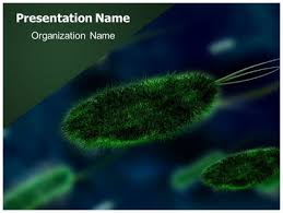 free templates for powerpoint bacteria free bacteria powerpoint template freetemplatestheme com