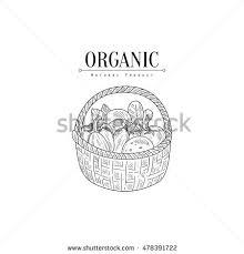fresh vegetables basket natural food farmers stock vector