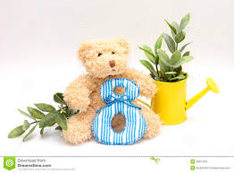 s day teddy composition on international women s day stock image image of card
