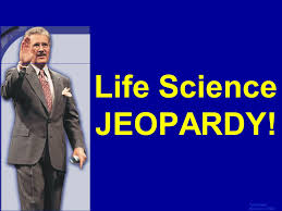 life science jeopardy template by bill arcuri wcsd ppt video