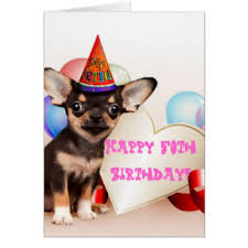 chihuahua perro cards greeting photo cards zazzle