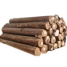 sagwan wood logs view specifications details of wood log by