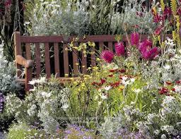 best 25 australian garden design ideas on pinterest modern