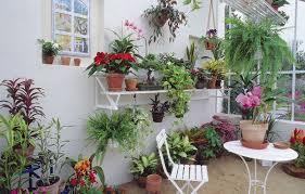 amenager une veranda que planter dans une véranda entre 5 et 10 c détente jardin