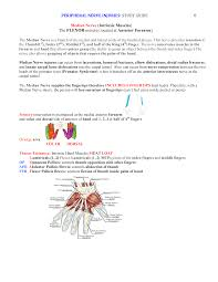 peripheral nerve injuries study guide page 8 ot nbcot fieldwork