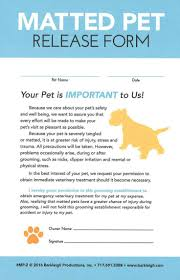 best 25 dog grooming business ideas on pinterest dog grooming