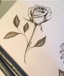 cooltop tattoo trends rose tattoo designs the body is a canvas