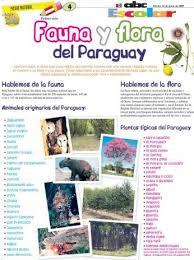 imagenes para dibujar faciles sobre el folklore paraguayo fauna y flora del paraguay edicion impresa abc color
