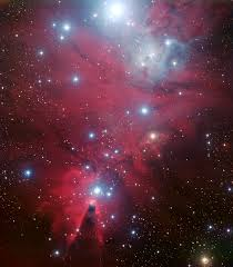ngc 2264 and the tree cluster eso