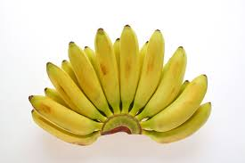 tiny banana guide to six different types of bananas
