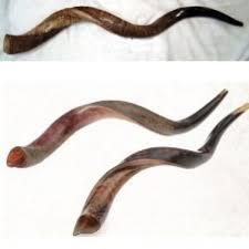 yemenite shofar stand king david yemenite shofar free gift