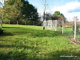 garden fencing ideas for dogs images and photos objects u2013 hit