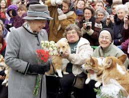 queen elizabeth just u201ccouldn u0027t resist u201d adding another corgi to her