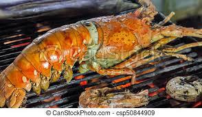 homard cuisine gril homard cuisine bouilli grillade grand homard