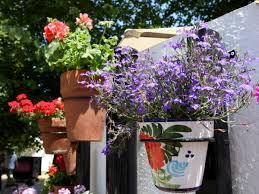 welcome to spanish rings spanish style flowerpot holders