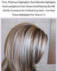 gray blending for dark hair best highlights to cover gray hair wow com image results
