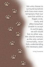 loss of pet dog quotes 2017 inspirational quotes quotes brainjobs us