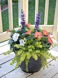 Flower Planter Ideas by 1530 Best Plant It Images On Pinterest Plants Pots And Flower