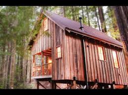 owl tree cabin in northern california small house designs
