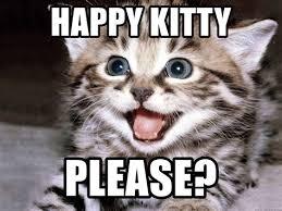 Kitty Meme Generator - th id oip oa3png1lk1wvzonq8aukaahafj