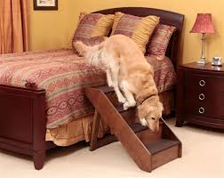 elevated dog bed with stairs large style elevated dog bed with