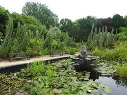 Ventnor Botanic Gardens Isle Of Wight Tour Mpg Website