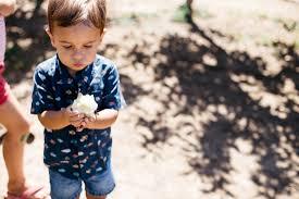 julian apple picking san diego lifestyle photographer brittney