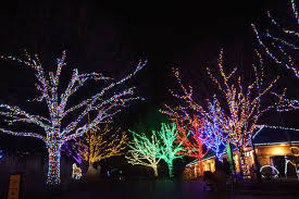 holiday light displays near me here are the best holiday light displays in the d c area curbed dc