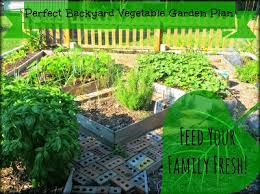 greneaux gardens perfect backyard vegetable garden plan feed
