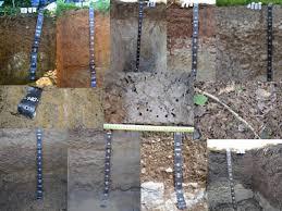 chambre r馮ionale d agriculture caractérisation des sols grand est