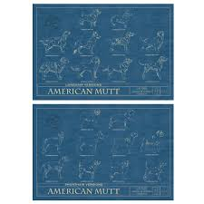 wall blueprints mutt blueprint mutt dog wall art animal wall art pet art
