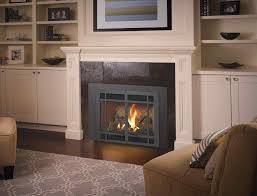 gas fireplace inserts modern napoleon lv50n vector 50 direct vent