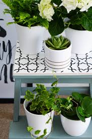 from simple stool to pretty plant stand u2014 the ordinary lovely