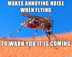 Mosquito Meme - good guy mosquito meme on imgur