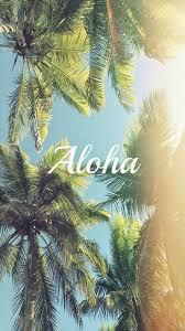 aloha palm trees iphone 6 plus hd wallpaper hd free download