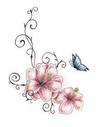 beautiful hibiscus flowers with butterfly
