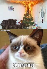 Tard The Grumpy Cat Meme - merry tard christmas imgur