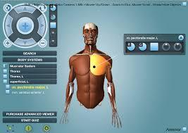 Online Human Body Doctor Games Online Anatomy