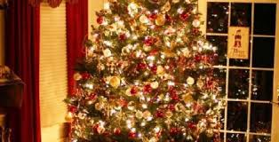 Decorate Christmas Tree Professionally by Decorate Christmas Tree With Ribbon Designcorner
