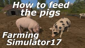 farming simulator 2017 how to feed the pigs youtube