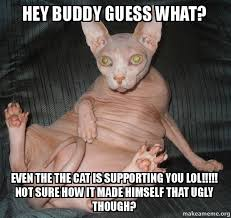 Ugly Cat Meme - hey buddy guess what even the the cat is supporting you lol