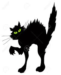 halloween clipart black background halloween cat images u0026 stock pictures royalty free halloween cat