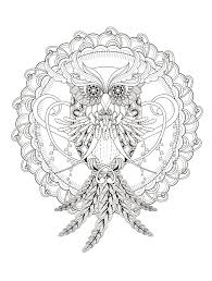 23 free printable insect u0026 animal coloring pages page 7 of