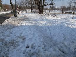 january 2011 park view d c
